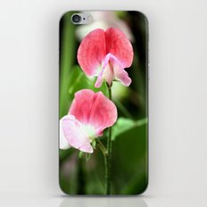 Sweetpea iPhone & iPod Skin