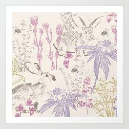 Wildflowers of the Tallgrass Prairie Art Print