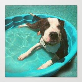 SERENA (shelter pup) Canvas Print