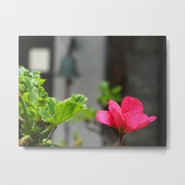Tranquillity in The Afternoon Metal Print
