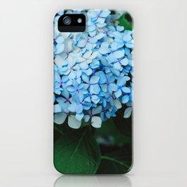 Blue Hydrangeas iPhone Case