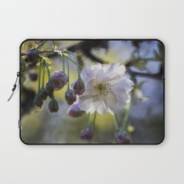 Blossom of Hope in a Cruel Spring Laptop Sleeve