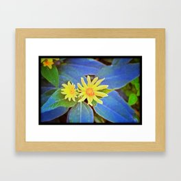 BabyBlue Framed Art Print