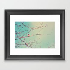 Bluebird Blue Framed Art Print