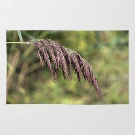 Summer Grass Rug