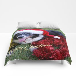 Christmas Wishes From Molly Comforters