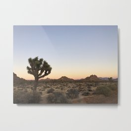 JOSHUA TREE VI Metal Print
