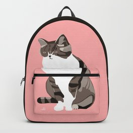 A Pink Cat Backpack