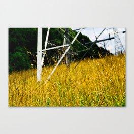 Orange Pylon Grass Canvas Print