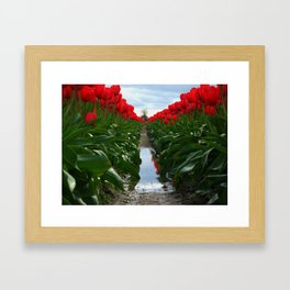 The Ladies in Red Framed Art Print