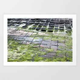 The Tesselated Pavement Art Print