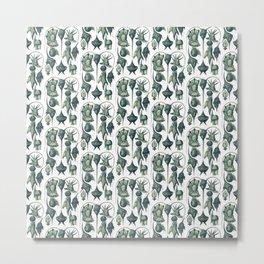Ernst Haeckel Peridinea Plankton Algae Teal Metal Print