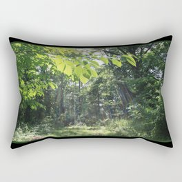 Jacob's Ladder Rectangular Pillow