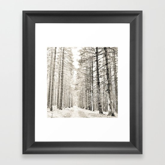 spruce forest Framed Art Print