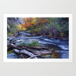 Mountain river. After raining. Night photography. Art Print