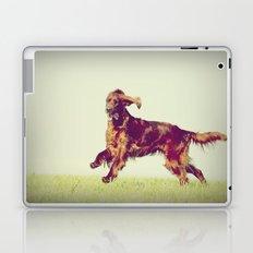 Setter Laptop & iPad Skin