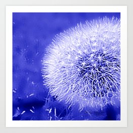 Dark Blue Summer Dandelion Puffball 2blue Art Print