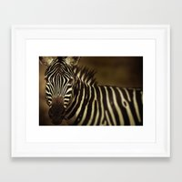 striped Framed Art Prints featuring Striped by DIEGO ARROYO
