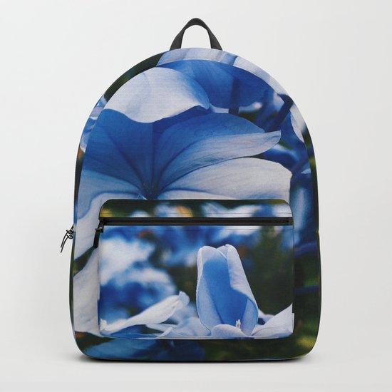 Dainty Backpack
