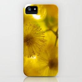 Acacia Flower II iPhone Case