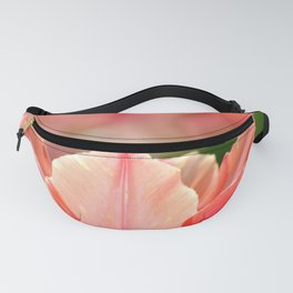 SPRING PINK AND RED TULIP Fanny Pack