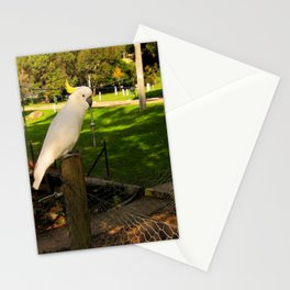 The Yellow-Crested Cockatoo  Stationery Cards
