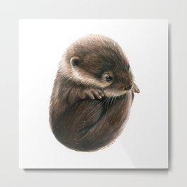 Shy Otter Metal Print