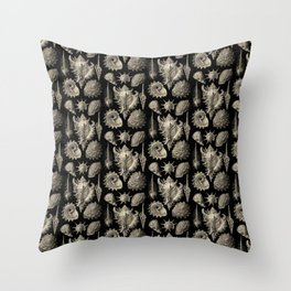 Ernst Haeckel Prosobranchia Sea Shells Throw Pillow