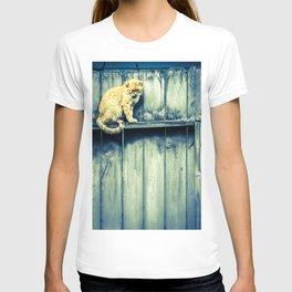 Fence Sitter T-shirt