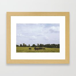 Kentucky, United States Framed Art Print