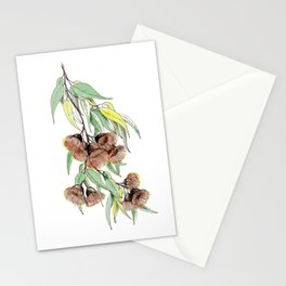 Flowering Red Gum Stationery Cards