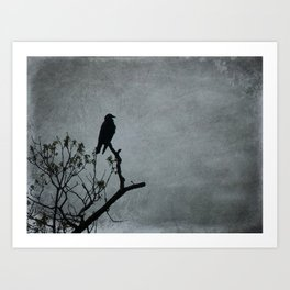 Majestic Crow Art Print
