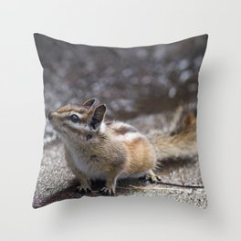 The Chipper Chipmunk Throw Pillow