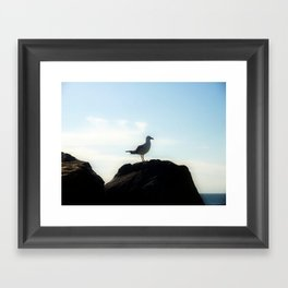 Bird's eye View Framed Art Print