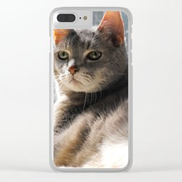King-Cat Clear iPhone Case