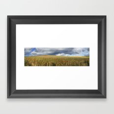 Poppies under the clouds Framed Art Print