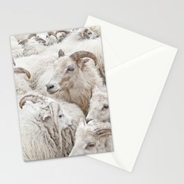 Stick Together Stationery Cards
