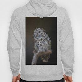 Lovely cute owl Hoody
