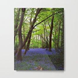Lilac Spring Metal Print