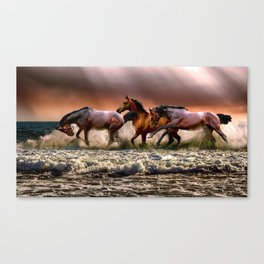 Horses Playing By The Sea Canvas Print