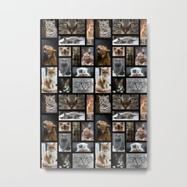 65 MCMLXV The Cat's Meow Postcard Collage Pattern Metal Print