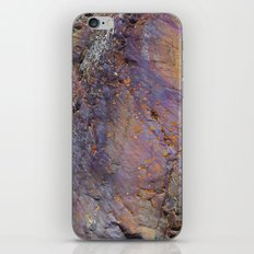 Colors of the Earth iPhone & iPod Skin