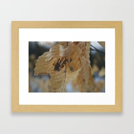 Winter Leaf Framed Art Print