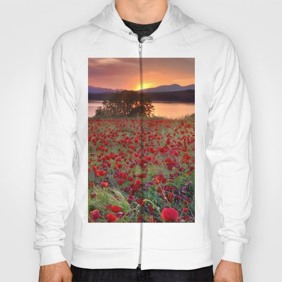 Sea of poppies at the lake Hoody