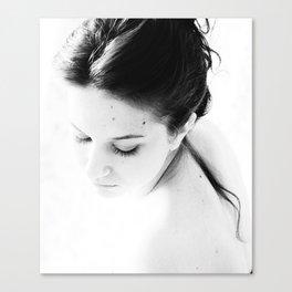 The Sense III Canvas Print
