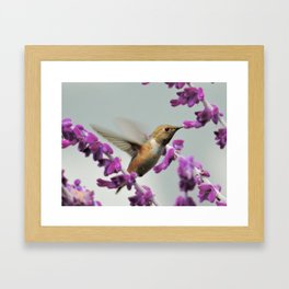 Slipping in for Another Sip Framed Art Print