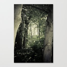 Enchanted forest I Canvas Print