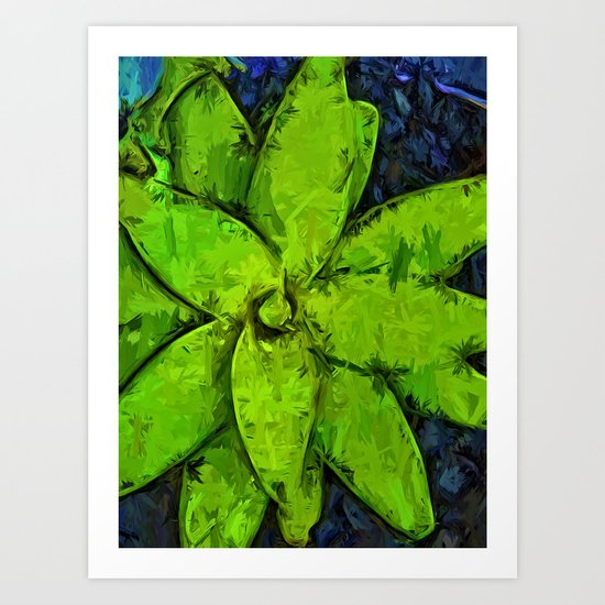 Green Agave and Dark Blue Pebbles Art Print