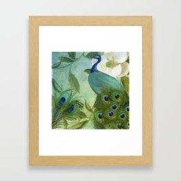 Peacock and Magnolia II Framed Art Print