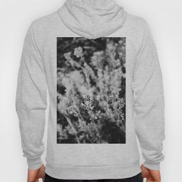 Life Is A One Time Offer, Use It Well. Hoody